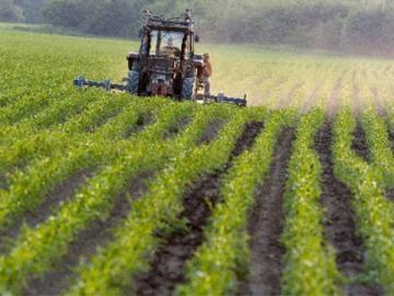 terreno-agricolo-coltivato_small