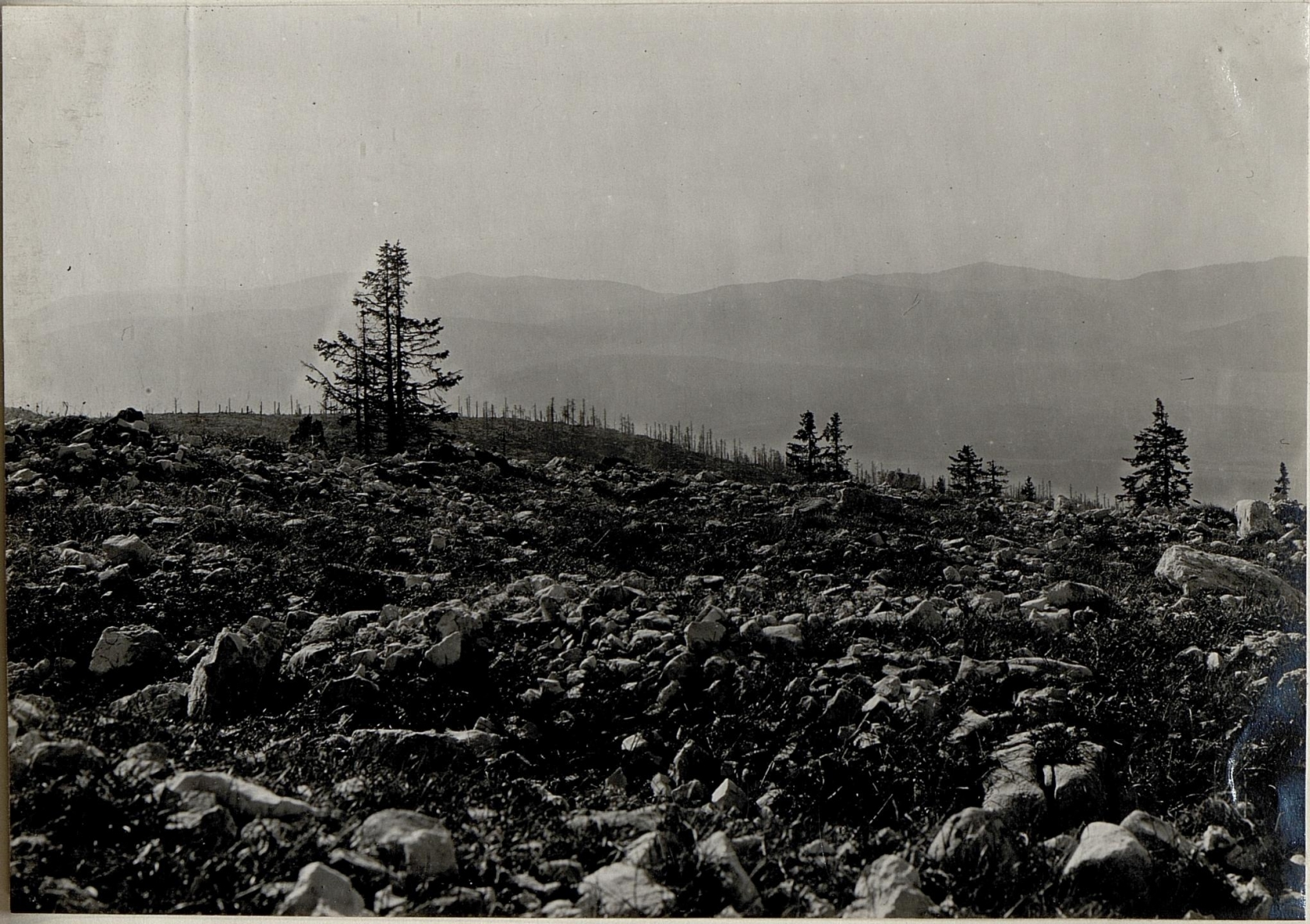 Stellung auf Monte Zebio ¤ 1819