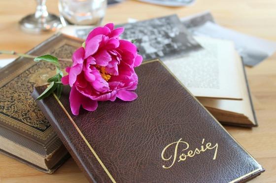 poetry-album-3433279_960_720